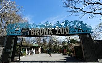 גן החיות ברונקס - Bronx Zoo