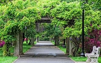 הגנים הבוטניים של ברוקלין - Brooklyn Botanic Garden