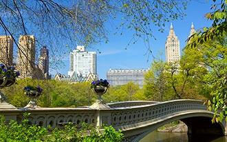 אפריל בניו יורק - בואו לגלות מה כדאי לעשות